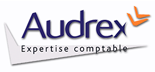 AUDREX Audit